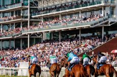 2021 Kentucky Derby: Let's Run with the Horses
